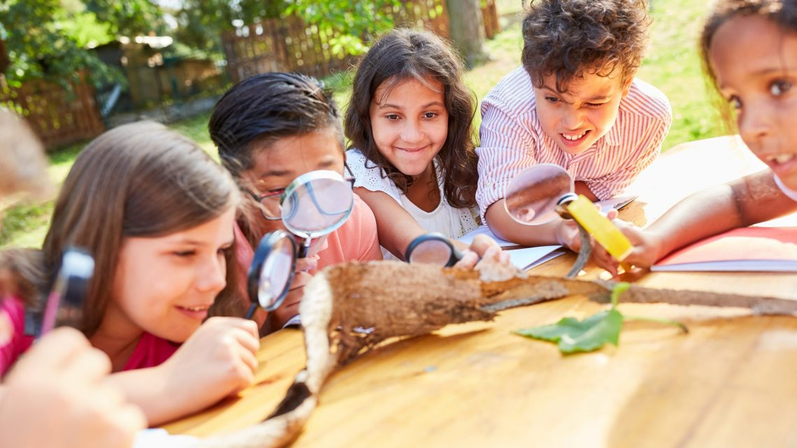 Inquisitive children look at tree bark with magnifying glasses